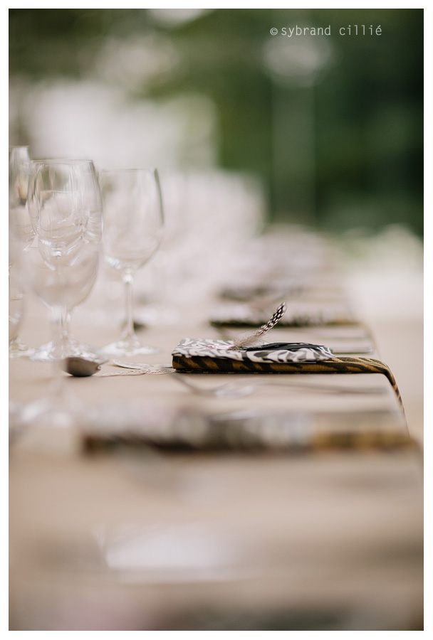 Beautiful Winelands Wedding with a Cheeta!