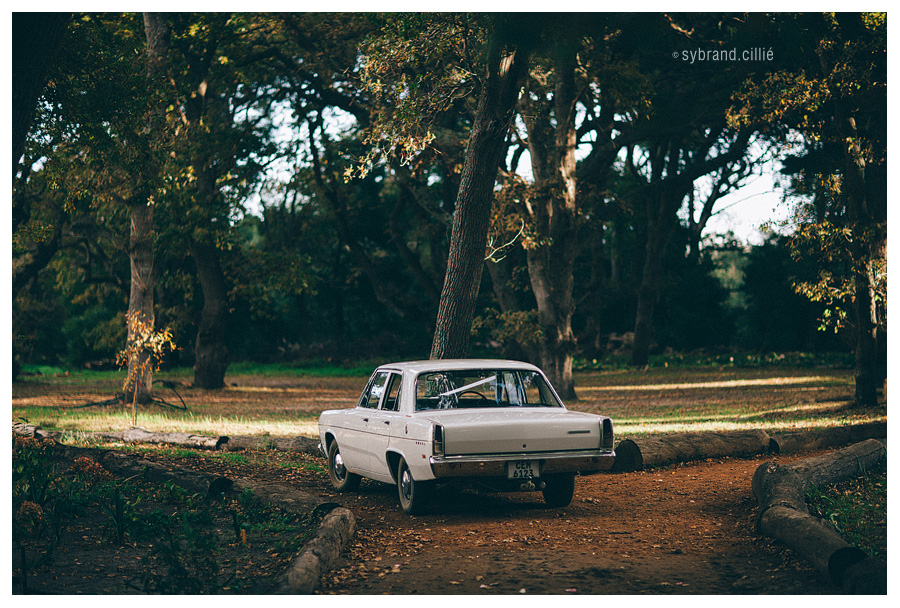 South African Forest Wedding - Bolftebos