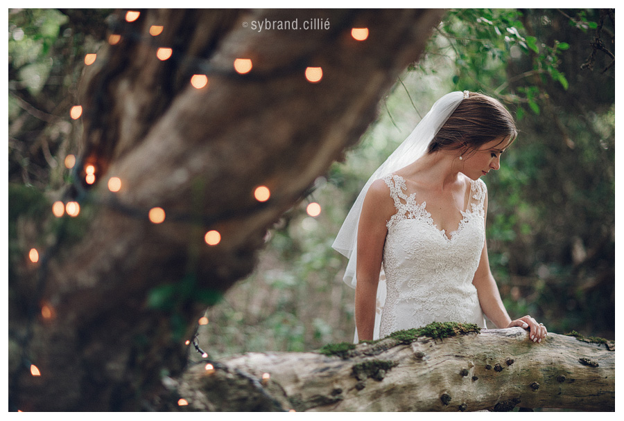 Gorgeous Grootbos Nature Reserve Wedding