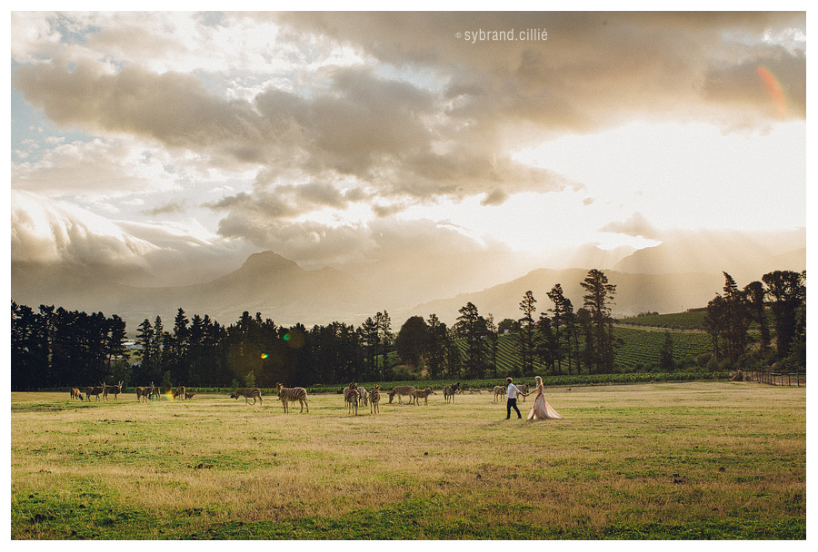 Franschhoek_Wedding_151219_065913