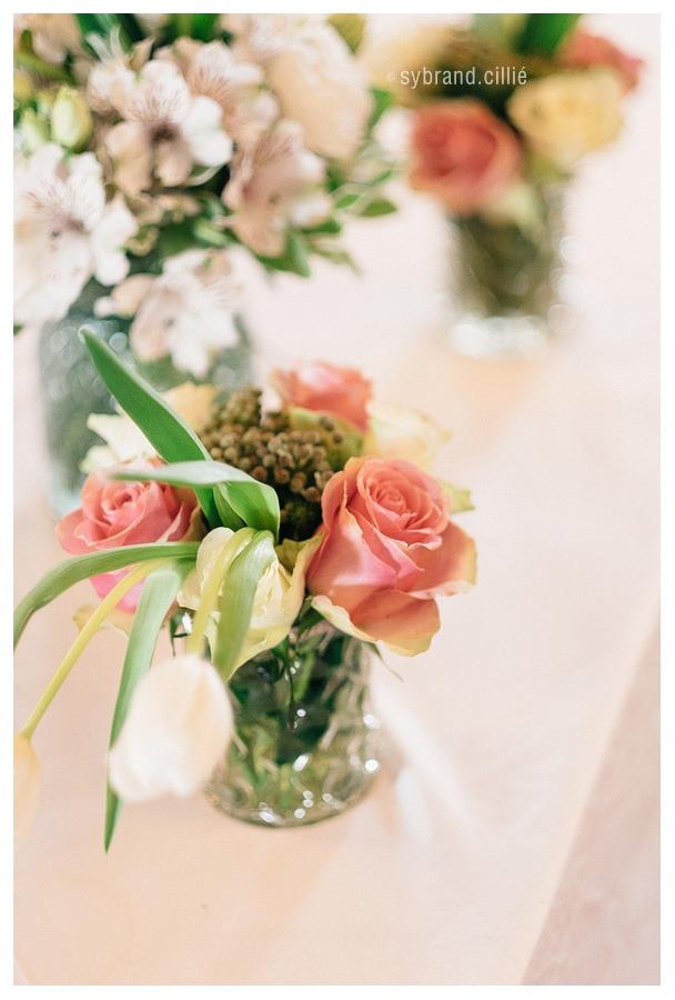 Holden_Mantz_wedding_E160423_15198