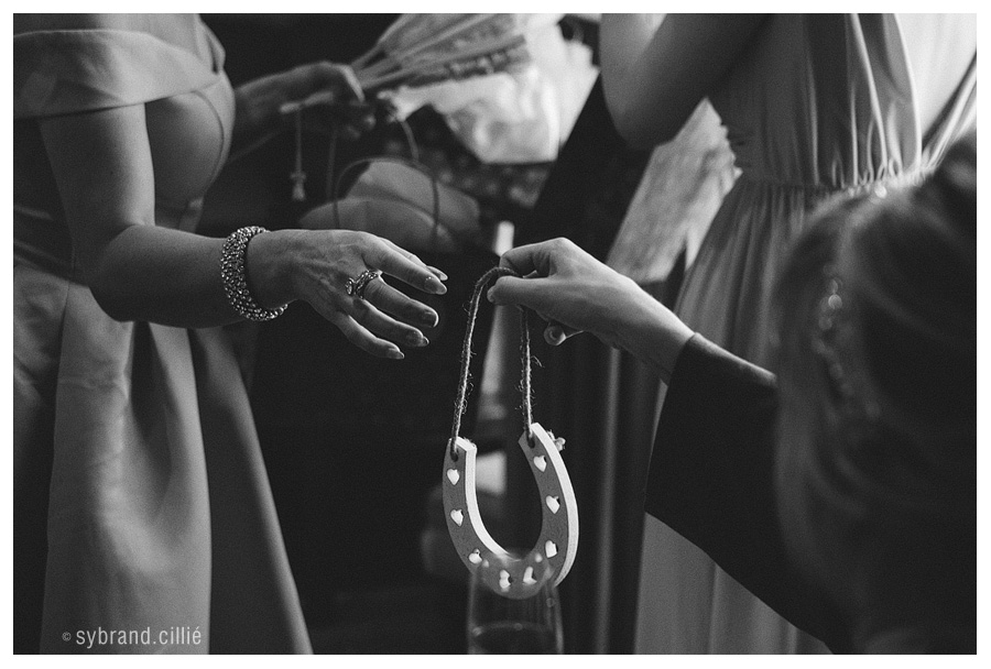 Holden_Mantz_wedding_E160423_15421