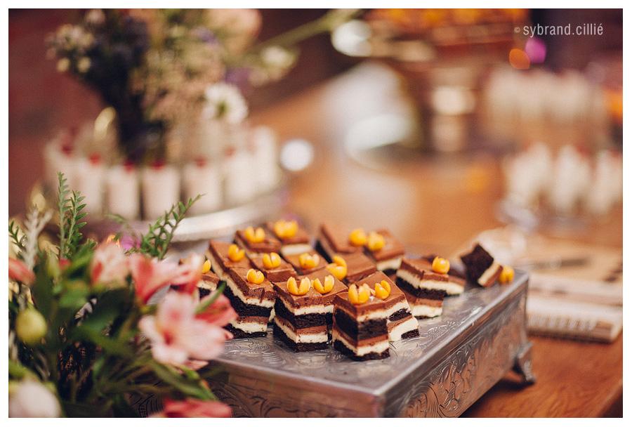 Holden_Mantz_wedding_E160423_17075