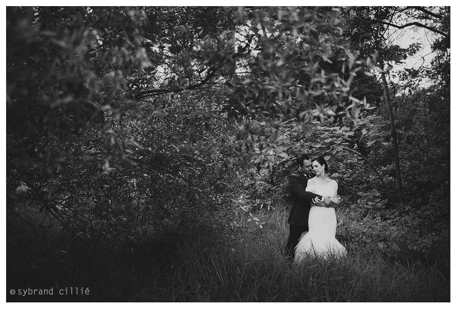 Brenaissance Wine Estate Wedding Photos